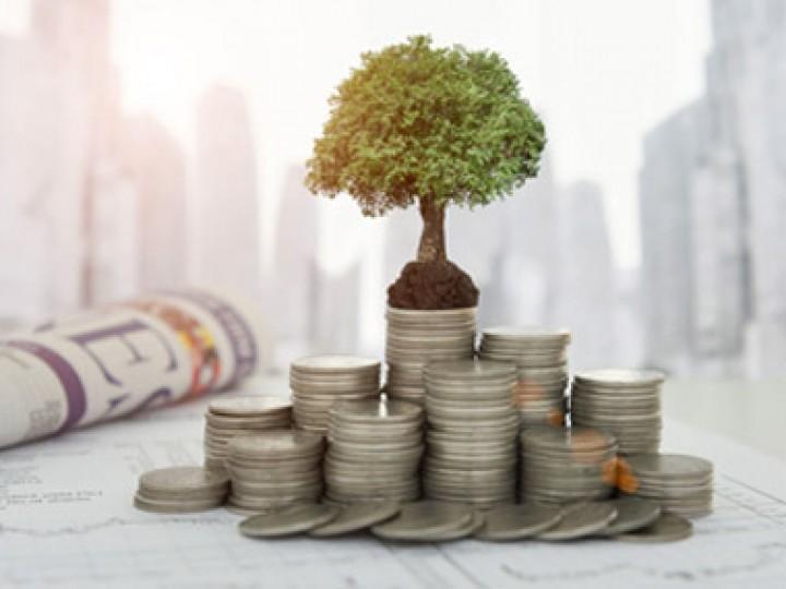 demo-eleven-investments-management